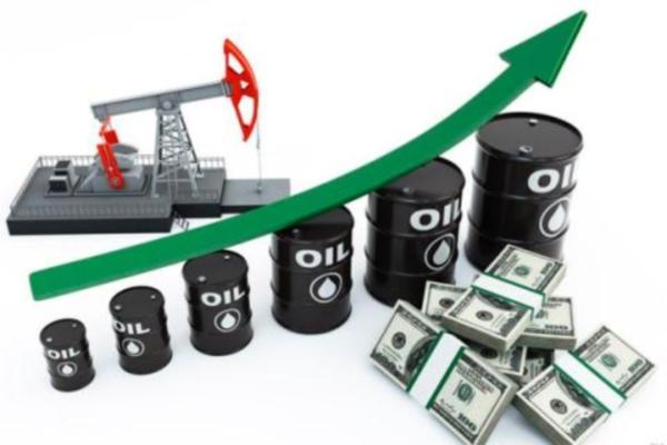 Стоимость нефти увеличилась неменее чем на5 процентов