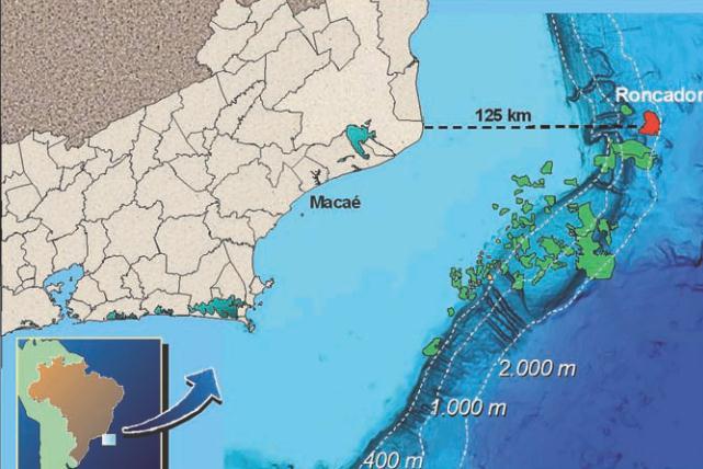 Норвежская Statoil приобрела четверть месторождения «Ронкадор» вБразилии