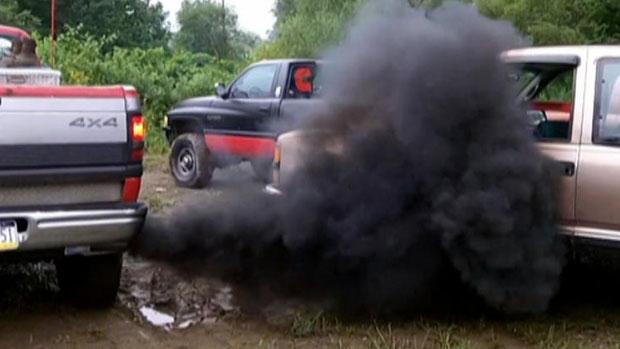 Фольксваген признался, что проверял токсичность дизельных машин наобезьянах