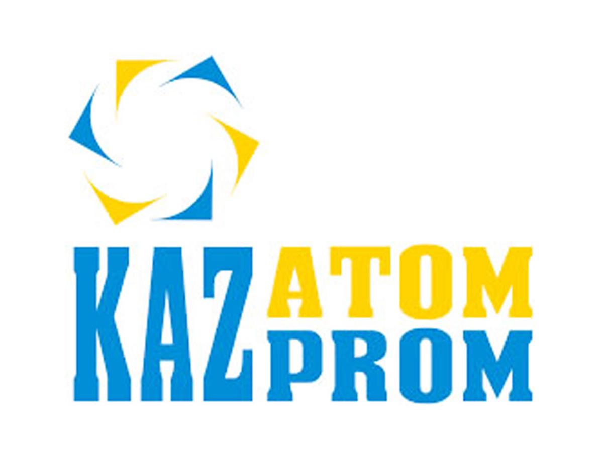 Казахстан желает производить ядерное горючее для государства Украины